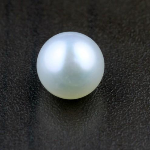 Pearl (Moti)